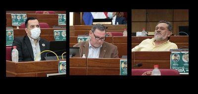 Senado blanquea a Zacarías Irún, Friedmann y Pereira