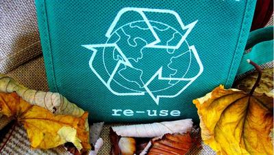 Un negocio que busca conservar el medio ambiente y generar empleo