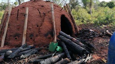 Madereros advierten  que inversiones están en riesgo