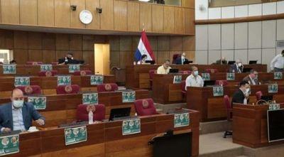 Senado estudia plan económico de US$ 365 millones
