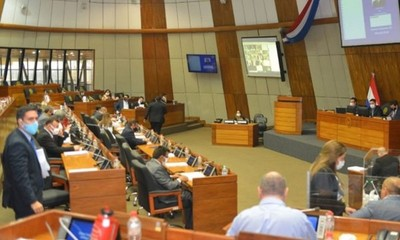 La Cámara de Senadores estudia plan económico de US$ 365 millones