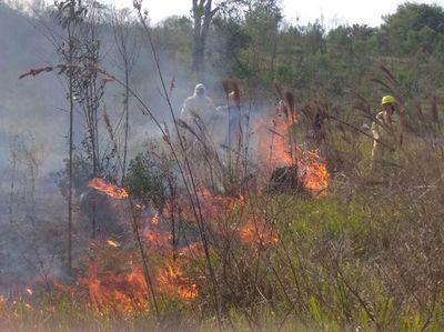 Lluvias reducen enormemente cantidad de focos de incendio en Paraguay