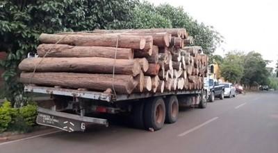 Camioneros pasarán más de tres años en prisión por tráfico de rollos