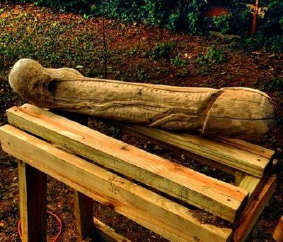 Omoingue ivainape anuestros insumoschinos: Salud de Argentina compra  penes de madera