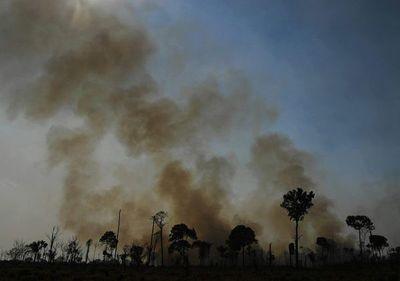 Brasil: estados se unen para proteger la Amazonía sin depender de Bolsonaro