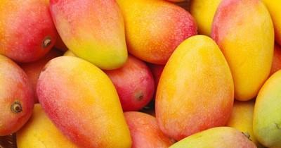 La Nación / Investigación plantea que industrias pueden obtener cristal de azúcar del mango