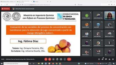 Investigadora busca alternativas innovadoras para industrializar el mango