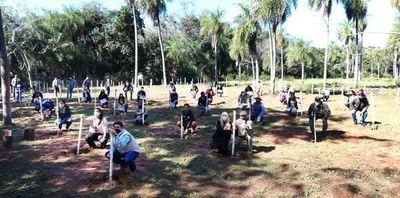 Impulsan producción de yerba mate en Yaguarón