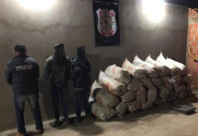 Amambay: detienen a hombres con más de media tonelada de marihuana