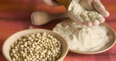 La Nación / US$ 370 millones ingresaron a Paraguay por envíos de harina de soja