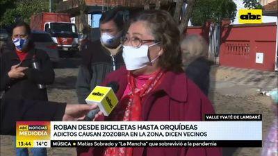 Roban desde bicicletas hasta orquídeas
