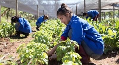 Escuela Autosustentable de Fundación Paraguaya fue elegida como una de las innovaciones de América Latina y el Caribe