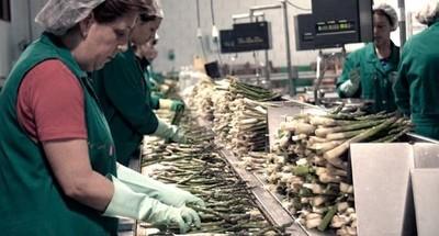 Cepal afirma que la pandemia borró 10 años de avances en la participación laboral femenina
