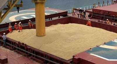 Exportaciones de soja aumentaron 33,4% y carne 7,7%