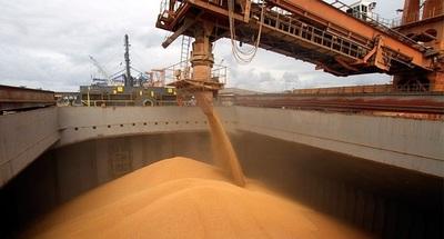 La exportación de soja cayó 28,5% en el 2019 y se espera un fuerte repunte para el 2020
