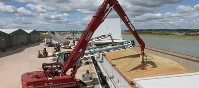 Paraguay exportó soja por USD 1.519 millones a octubre