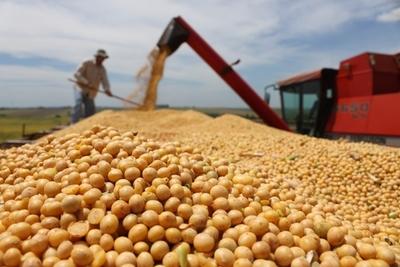 La agricultura crecerá de 8 a 10,5% y la industria caerá este año 3,5%