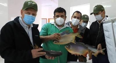 Piscicultores de Nueva Alborada habilitan planta procesadora de pescado
