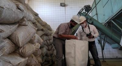 Impulsan el desarrollo y mejoramiento del sector yerbatero