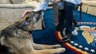 """""""Aburrido pero importante"""": Biden y su primer semestre en la Casa Blanca"""