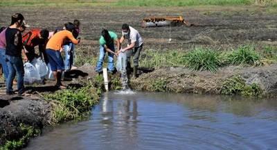 ITAIPU suministró más de 20 millones de peces nativos para consumo y siembra desde el 2000