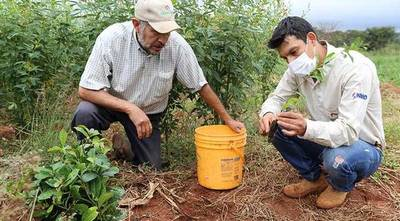 INBIO introduce innovaciones a su programa de Agricultura Sustentable con Biotecnología