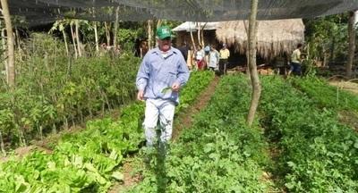 Gobierno aportará ₲ 3.000 millones más para fortalecer la agricultura familiar