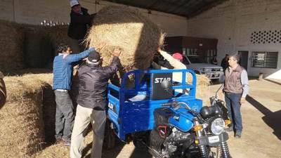 Entregan insumos a pequeños y medianos productores de Ñeembucú