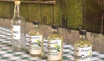 MAG impulsa producción sostenible y orgánica en el Caribe