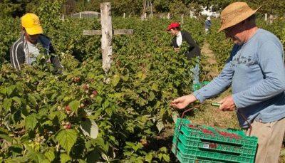 CONADERNA acompaña planes de sustentabilidad emprendidas por cooperativas