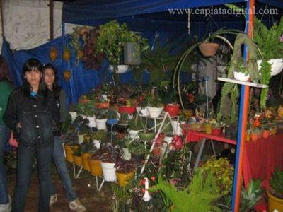 Expo Capiatá va hasta el domingo
