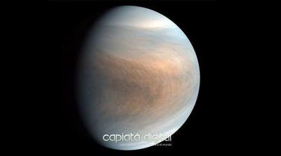 Vida en Venus: el revolucionario hallazgo que muestra que puede haber vida extraterrestre