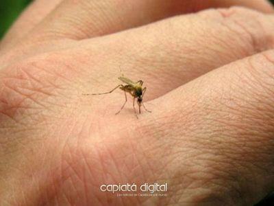 Estudian posibilidad de que el dengue haga indemnes a las personas ante el Covid 19