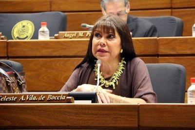 """Celeste Amarilla dijo que sigue tratando con algunas """"bestias"""" en Cámara Baja"""