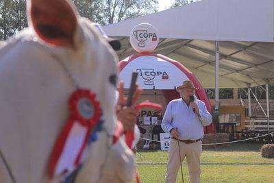 Juras y remates de la Expo Nacional Ganadera serán transmitidos por COPA TV