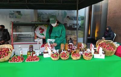 Asunción y San Lorenzo: realizan feria de frutillas y hortalizas