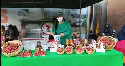 Realizan feria de frutillas y hortalizas en simultáneo en Asunción y San Lorenzo