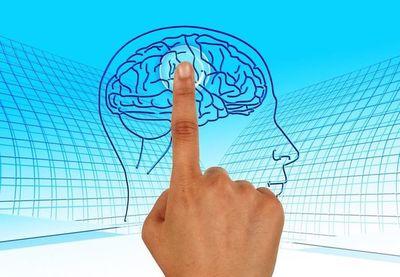 Día del cerebro: Las relaciones íntimas y otras actividades pueden ayudar a mantenerlo sano