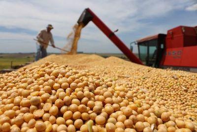 Más de 4 millones de toneladas de soja fueron exportados en el primer semestre