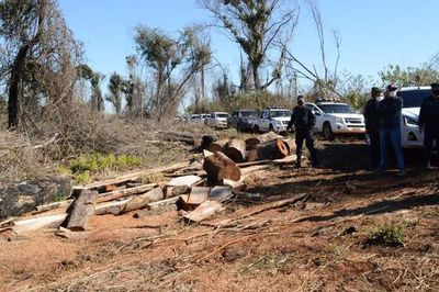 Constatan delito ambiental en reserva para parque en Itapúa