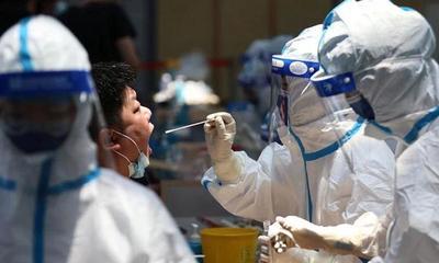 China se negó a colaborar con la OMS para realizar una nueva investigación sobre el origen del coronavirus – Prensa 5