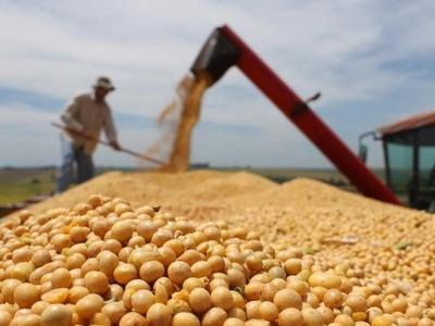 Complejo soja genera US$ 2.259 millones en primer semestre un crecimiento del 36%