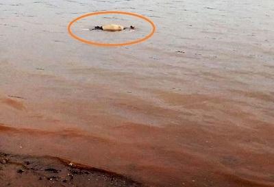 Hallan cuerpo de pescador en el LAGO de ITAIPU