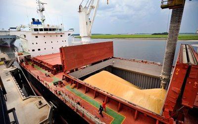 Pese a bajante, ya se exportaron 4 millones de toneladas de soja