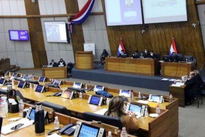 Diputados sanciona Ley que cancela licencia a empresas del transporte público y aprueba más dinero para Salud
