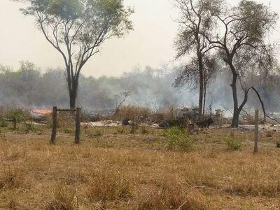 Emergencia Nacional está atenta a posibles incendios forestales a nivel país