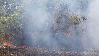 Salud alerta por focos de incendios en Concepción
