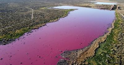La Nación / La laguna Cerro de Argentina: polución pesquera en Trelew