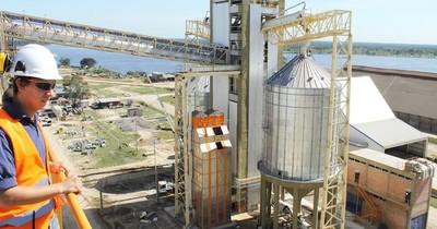 La Nación / Sector agroindustrial experimentó a junio el peor nivel de molienda de soja desde el 2013