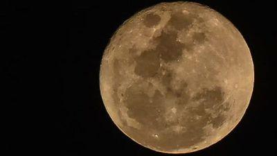 La luna llena de ciervo en su máximo esplendor este sábado